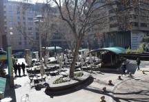 Jozie Square