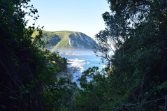 Storms River Trail View